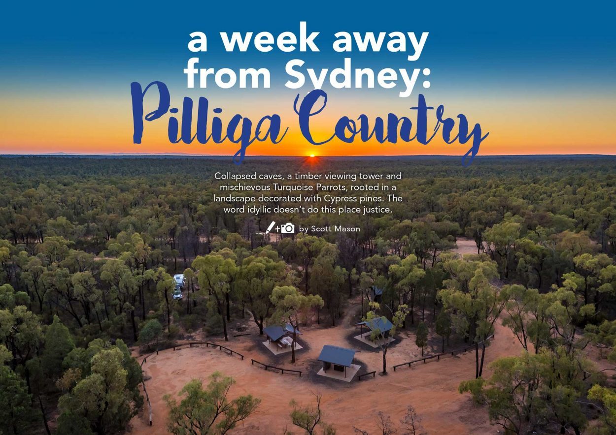 pilliga-country