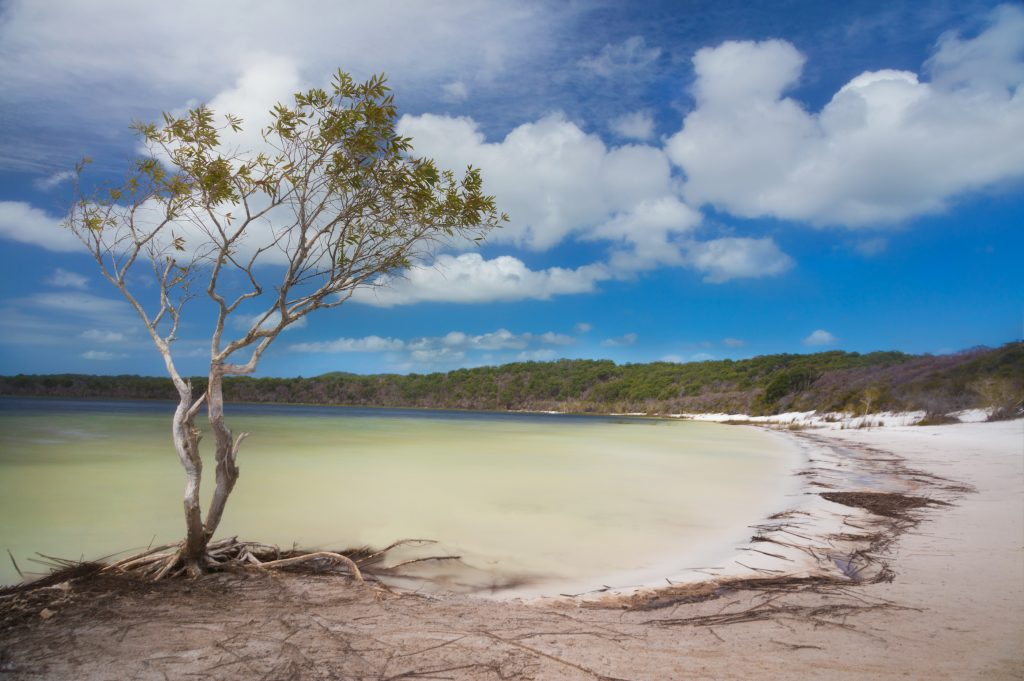 Fraser-Island-Flash-Sale-ONLY-9-1024x681