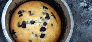 Recipe - Giant blueberry camp oven muffin