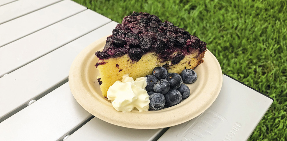 Upside-Down Blueberry Cake