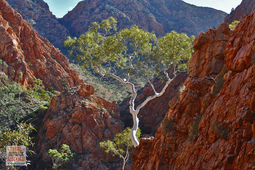 Standley Chasm - The Views Most Tourists Never See